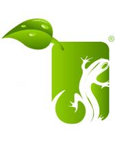 Green Salamander logo